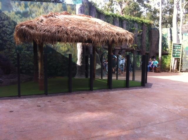 Dreamworld Tiger Enclosure